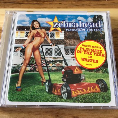 [BOX 3] Zebrahead-Playmate of the year