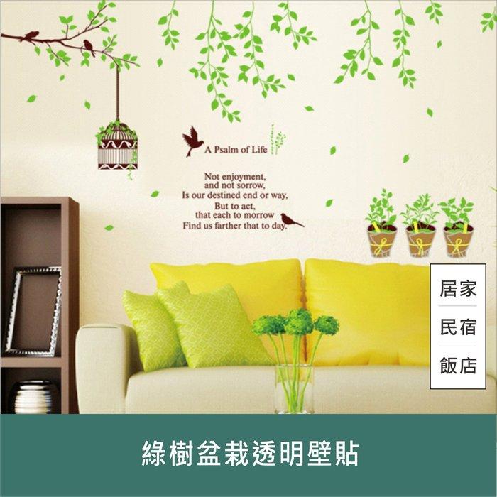 綠樹盆栽透明壁貼 60x90 可重複黏貼 大尺寸風景壁貼 貼紙 安親班 室內裝飾 節日佈置【居家達人A369】