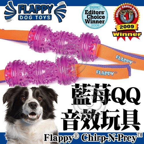 【🐱🐶培菓寵物48H出貨🐰🐹】美國FLAPPY》藍苺QQ音效狗玩具中小型犬用-M號 特價470元