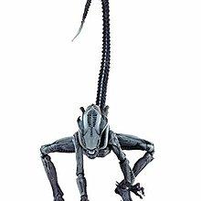 全新 NECA Alien vs Predator 電玩版 Arachnoid 腦膜異形