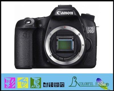 彩色鳥(相機出租 鏡頭出租 )Canon 70D +CANON EF 600mm F4 L IS II USM canon 70D + CANON  600mm