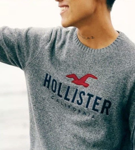 HCO Hollister  長袖  毛衣 針織衫 現貨 車繡 大海鷗 LOGO 灰