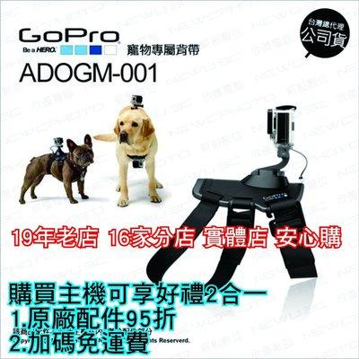【薪創新生北科】GoPro 原廠配件 ADOGM-001 Dog Harness 寵物專屬綁帶 公司貨 頸帶 寵物綁帶