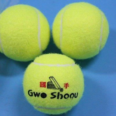 一般網球 國手硬式網球 硬式練習網球 ...