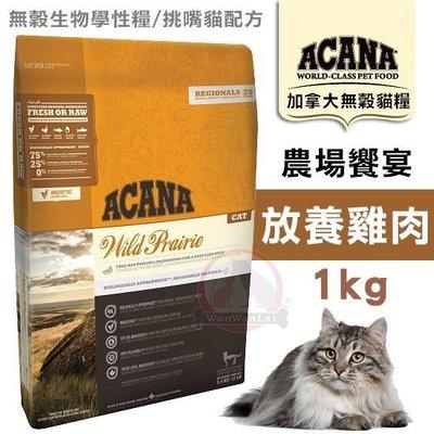 汪旺來【歡迎自取】愛肯拿農場饗宴-無穀貓1kg(放養雞肉+小紅莓)成幼貓ACANA低敏飼料/WDJ推薦貓糧