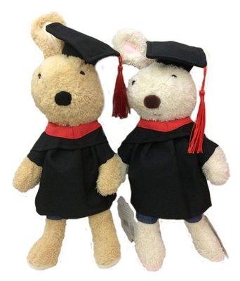娃娃屋樂園~正版法國兔砂糖兔-畢業版30CM 每隻300元/畢業熊/學士熊/畢業拍照花束