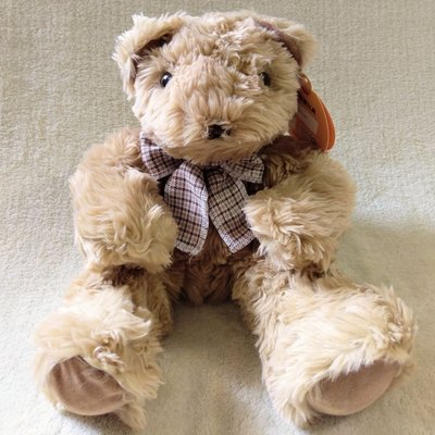 HUG泰迪熊絨毛玩偶