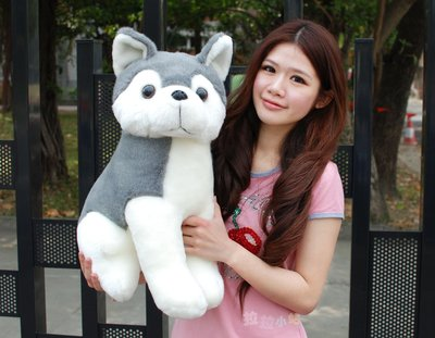 拉拉小站~可愛哈士奇娃娃~高52公分~哈士奇狗娃娃~最受歡迎玩偶