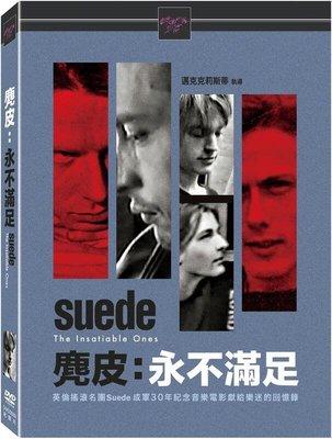 (全新未拆封)麂皮:永不滿足 Suede:The Insatiable Ones DVD(得利公司貨)