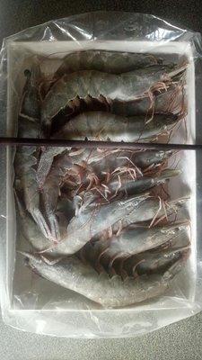 大白蝦1箱10盒