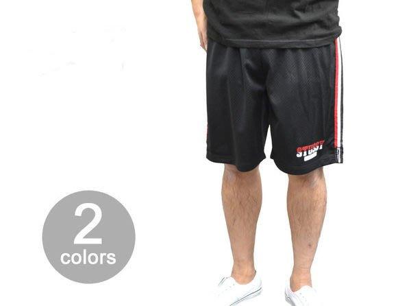 【 超搶手 】 全新正品 春季最新 Stussy International Team Short 球褲短褲 白L XL