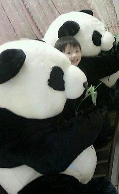 超~~超~~~超~~~~超~~~~~超大的1:1仿真大熊貓