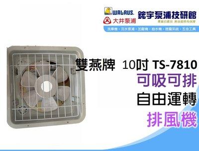 含稅【鋐宇泵浦技研館】雙燕牌 超商限一台 電扇 TS-7810 10吋 排風機 220V