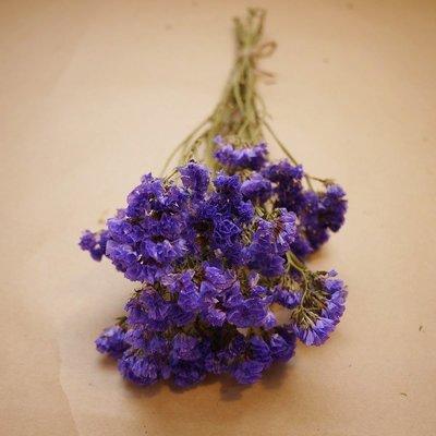 《Roof Garden Workshop》【乾燥花材】乾燥紫星辰一束/鮮花乾燥/外拍/婚紗/佈置/花圈