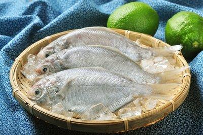 肉質肥美鮮嫩「肉魚」