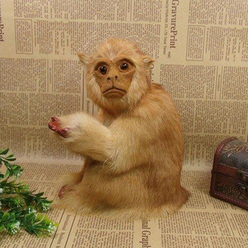 仿真野生動物猴子擺設 居家餐廳動物道具桌面櫥窗拍攝道具_☆優夠好SoGood☆