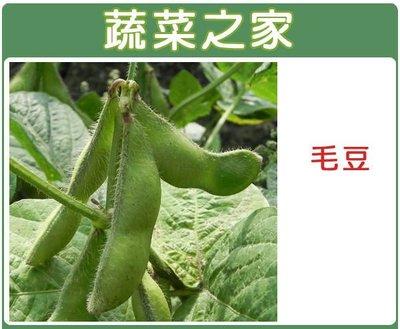 【蔬菜之家】E09.毛豆種子50顆(三粒莢多,莢大,色綠,產量佳.蔬菜種子)