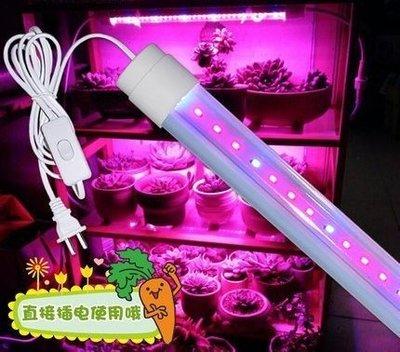 LED植物生長燈/多肉生長增豔專用/30cm6w/補光燈/溫室組培/紅藍光合防水植物燈管 - 千葉園藝有限公司