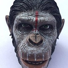 PLANET OF THE APES Caesar 1/6 figure head fit hot toys body