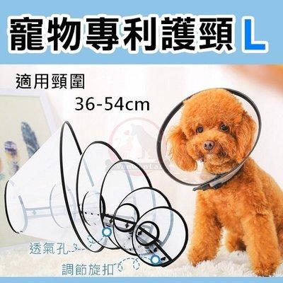 汪旺來【歡迎自取】Baolin寵物專利...