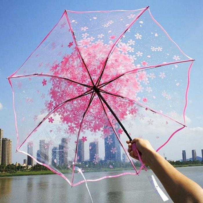 QIUTONG彩色折疊透明雨傘 三折透明傘創意雨傘櫻花傘女士用傘