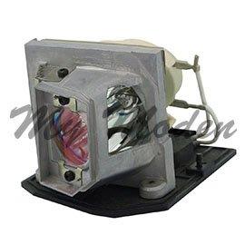 Optoma ◎SP.8EG01GC01原廠投影機燈泡 for 、TX615-GOV