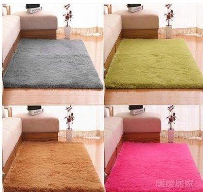 地毯 0.8*2米可水洗絲毛地毯NNJ-1228【暖暖居家】