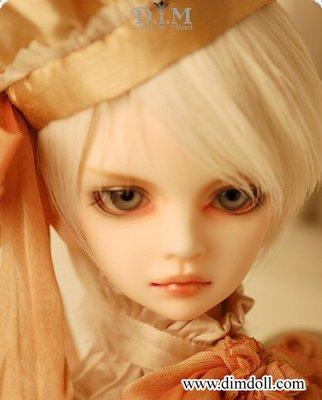 [BJD娃頭]絕版韓廠 DIM-Doll in Mind-Ace-普肌裸頭(1/4MSD四分)