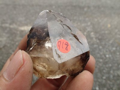~shalin-crystal~手握式~超完整優質巴西玻璃種水膽鱷魚骨幹水晶~71公克~~低價起標!!不錯喔!