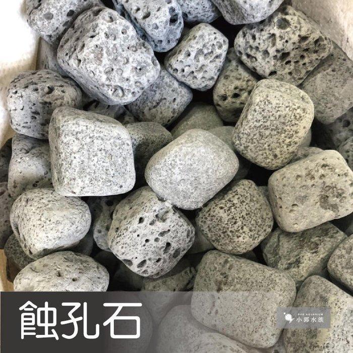 小郭水族-精選【蝕孔石1KG】綁水草 辣椒榕 類八海石 底沙 底砂 河道 底土 石頭