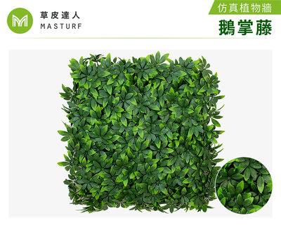 【草皮達人】鵝掌葉-大片裝 仿真植物牆(350元/片,整箱10片特價3300含運 大片50cmx50cm)