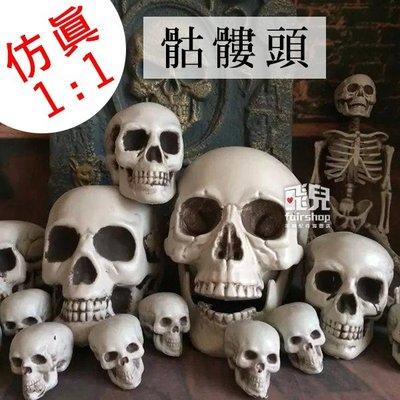 【飛兒】仿真1:1尺寸!骷髏頭 一比一 人類模型 人體 骨骼模型 頭骨 骷髏模型 白骨 COSPLAY 萬聖節 161