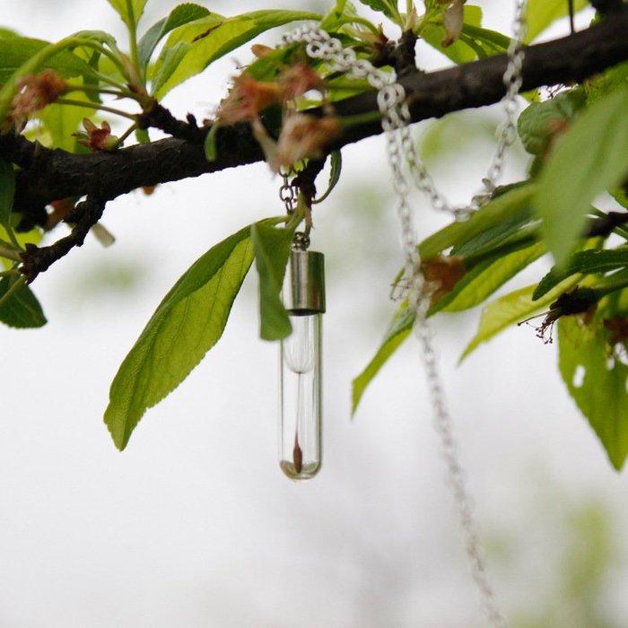 【每日一好物】蒲公英男士歐美創意速賣通熱銷許願瓶約定吊墜種子項鍊DIY歐美風格