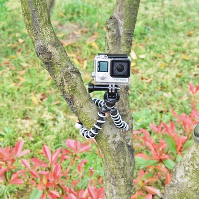 章魚三腳支架For Gopro8/7/6/5小蟻4K大疆運動相機配件八爪魚固定#配件#車用#支架