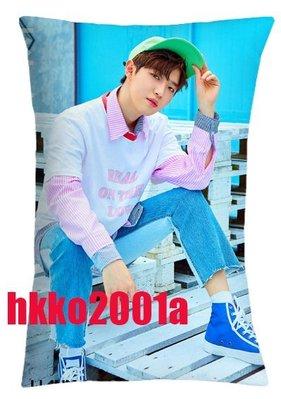 Wanna One [ 雙面抱枕套 ] (金在奐) 現貨在台 Produce 101 TO BE ONE 演唱會