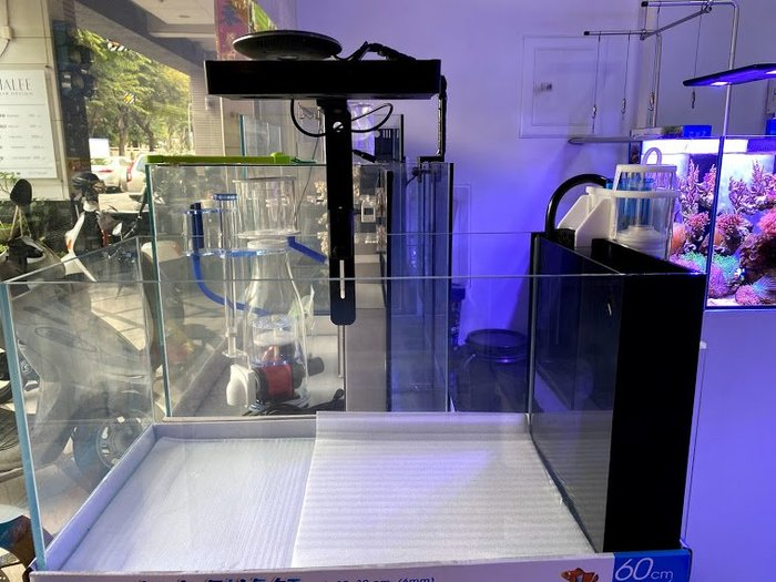 *海葵達人*E-SV3-60台灣ISTA伊士達~台製新款60*30*30cm 超白玻璃側濾缸6mm海水版套缸