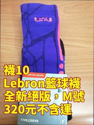 Lebron 絕版籃球襪 湖人隊 紫配色 16 17