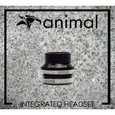 [Spun Shop] Animal Bikes BMX Headset 頭碗組