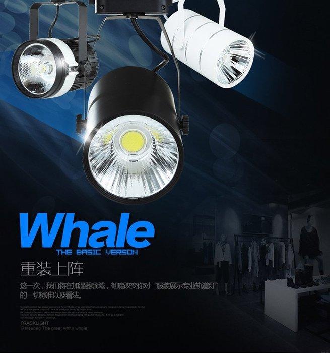 5Cgo【代購】寬壓LED軌道射燈7W 12W 20W 30W 40W白光/暖光服裝店鋪珠寶展廳客廳背景軌道燈