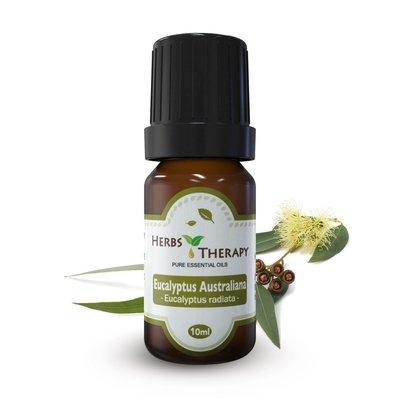 【植物療法】HERBS THERAPY 澳洲尤加利精油 10ml