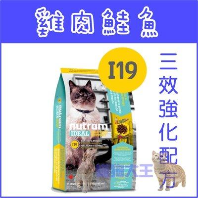 **貓狗大王**【贈500元禮卷】【Nutram紐頓】I19三效強化貓雞肉鮭魚----6.8KG