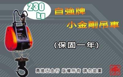 (含稅) 小金剛吊車 自強230KG 電動吊車 高樓小吊車 吊磚機 捲揚機 DUKE 基業  川方 小金鋼吊車 吊車