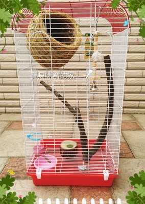 。╮♥咪嚕寵物用品♥╭。小蜜的家(原木搖擺啃木/果凍台)~適合:蜜袋鼯/寵物鳥/松鼠..等小動物