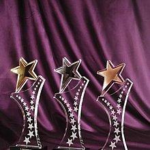 水晶獎座 水晶獎盃 水晶獎杯 水晶獎牌 Star Crystal Trophy Crystal Plaques Crystal Award