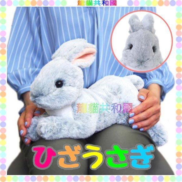 ※龍貓共和國※日本正版《超療癒 仿真擬真 小白兔 兔子 兔寶寶 絨毛娃娃 布偶玩偶37公分灰色》生日情人聖誕節禮物