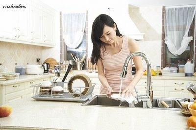 尼克卡樂斯~外銷日本廚房不鏽鋼滴水碗盤架 碗盤收納架 刀叉收納架 滴水盤架 廚房置物架收納架