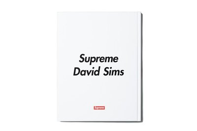 (TORRENT) 2015 秋冬 Supreme David Sims For Supreme Books 書