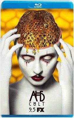 美國恐怖故事:邪教 美國怪談 美国怪谭  第7季 2碟  American Horror Story 不兼容PS