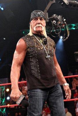 ☆阿Su倉庫☆WWE摔角 TNA Hogan H Squared Limited Edition H2限定版 熱賣特價中