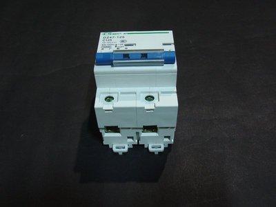【285】直流斷路器 2P 短路保護開關 電動車  無熔絲開關   80A 100A 125A 充電器開關